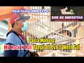 Shr Bc Bergetar Usai Mabung Rock N Roll Tampil All Out  Menit Full  Mp3 - Mp4 Download