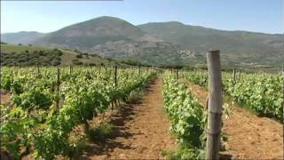 TSANTALI Enter the new era of Greek wine Part 1/2 (English lang.)