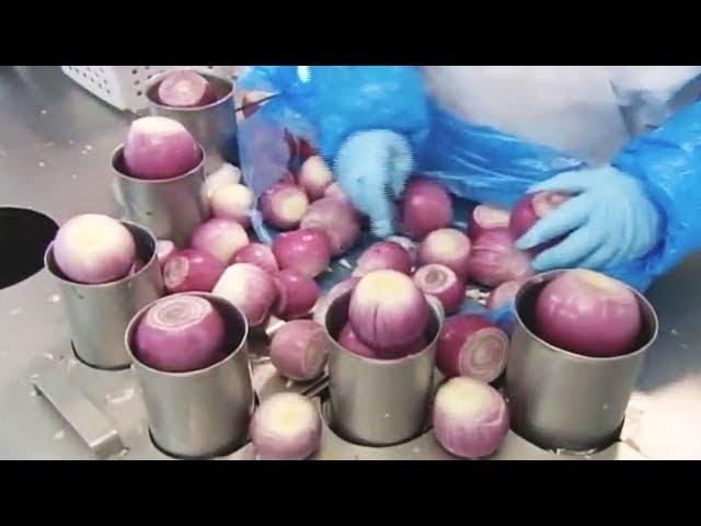 ये एडवांस मशीने आपके होश उड़ा देगी ✅ Amazing Food Industry Machines