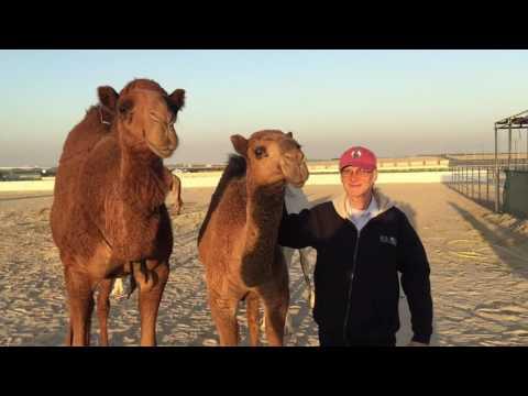 Roger's trip to Kuwait & Dubai
