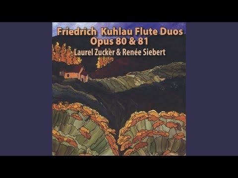 Duo brillante No. 3, Op. 81: I. Allegro