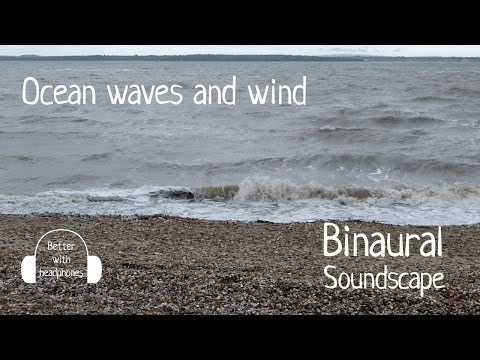 Ocean waves and wind  Binaural sea and beach sounds recording