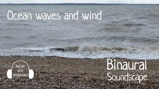 Ocean waves and wind - Binaural sea and beach sounds recording