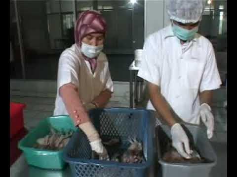 teknologi pengolahan ikan asin