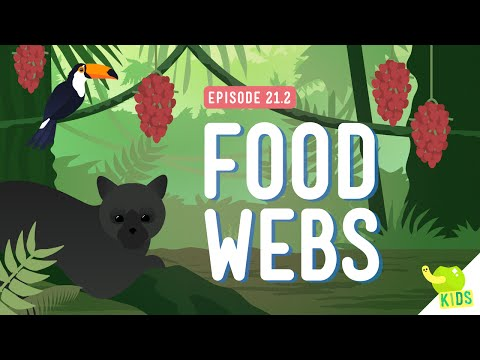 Food Webs: Crash Course Kids #21.2