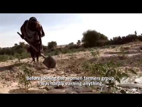 OCHA in the Sahel region OCHA (EN)