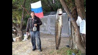 Отдых , рыбалка на р. Дон .г.  Богучар ,  с. Белая горка.