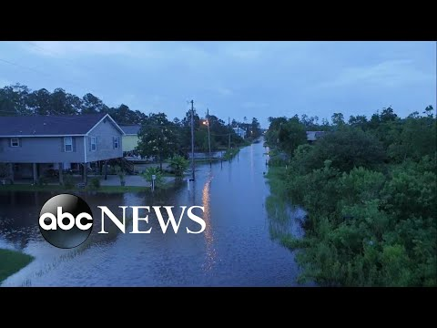 Tropical Storm Cindy makes landfall in Louisiana