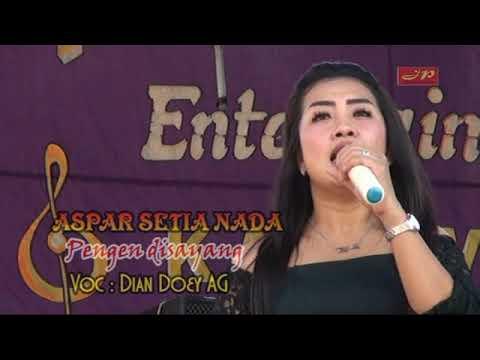 Aspar Setia Nada / PENGEN DISAYANG / Dian Doey