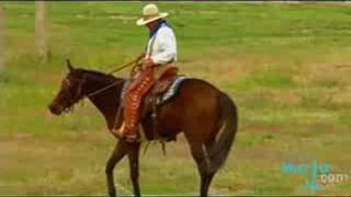 The Cowboy Culture of Fort Worth, Texas