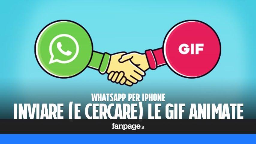 Kontodaten Per Whatsapp : aggiornamento whatsapp per iphone come inviare e cercare le gif youtube ~ Yasmunasinghe.com Haus und Dekorationen