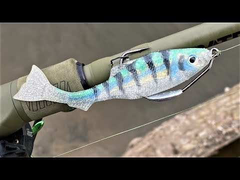 An Epic Little Bait Fish | Inject To Catch