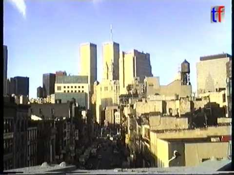 Remember the Twin Towers - Manhattan Skyline & Two Bridges Section, 1995.