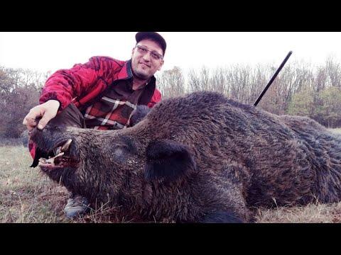 Wild Boar Driven Hunt Romania 2018 - Los Mejores Momentos De Nuestras Batidas 2018 Rumania