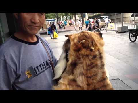 Guangzhou Street Markets - a day in the life of...
