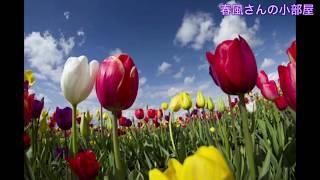 (子守唄風)花は咲く〜小声で子守唄風に歌ってみた(ASMR)