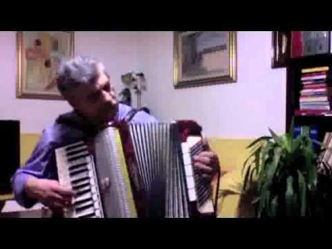Fisarmonica Weltmeister 96 bassi
