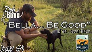 'Bella... Be Good' Puppy Training Series Following Bella's Life | Ep: #1
