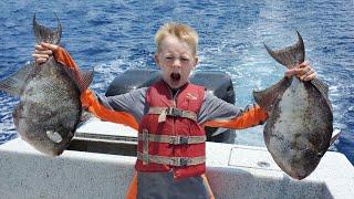 Trigger Fish Catch & Cook - Off Shore Fishing: Tuna, Mahi, Trigger fish, Snapper, Shark and More