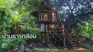 เที่ยวบ้านธารกล่อม นอนบ้านต้นไม้และสายน้ำ เชียงใหม่ | Travel 101 | Thanklom Tree House