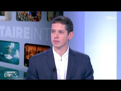 Quelle place pour les énergies renouvelables ? - Un monde en docs (14/01/2017)