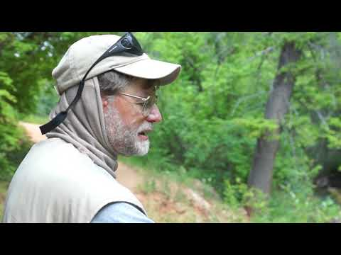 Learn About Fishing Stone Fly Hatch June 2018 Utah