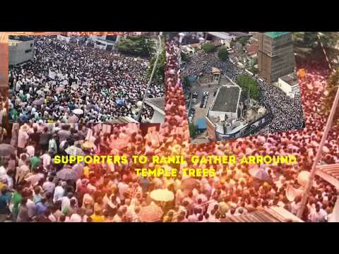 Protest supports Ranil | Ranil Wickremasinghe | Ranil's supporters gather in Colombo