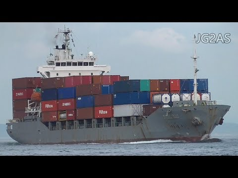 PEGASUS PACER コンテナ船 Container ship DONG YOUNG SHIPPING 2017-JUL