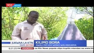 KILIMO BORA: Mbinu tafauti katika kilimo | Jukwa la KTN