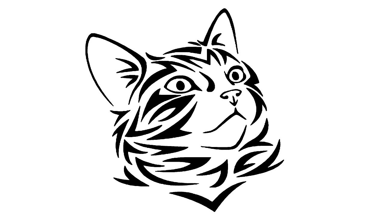Coloring Pages-How to Draw a Cartoon Cat face: Step by ...
