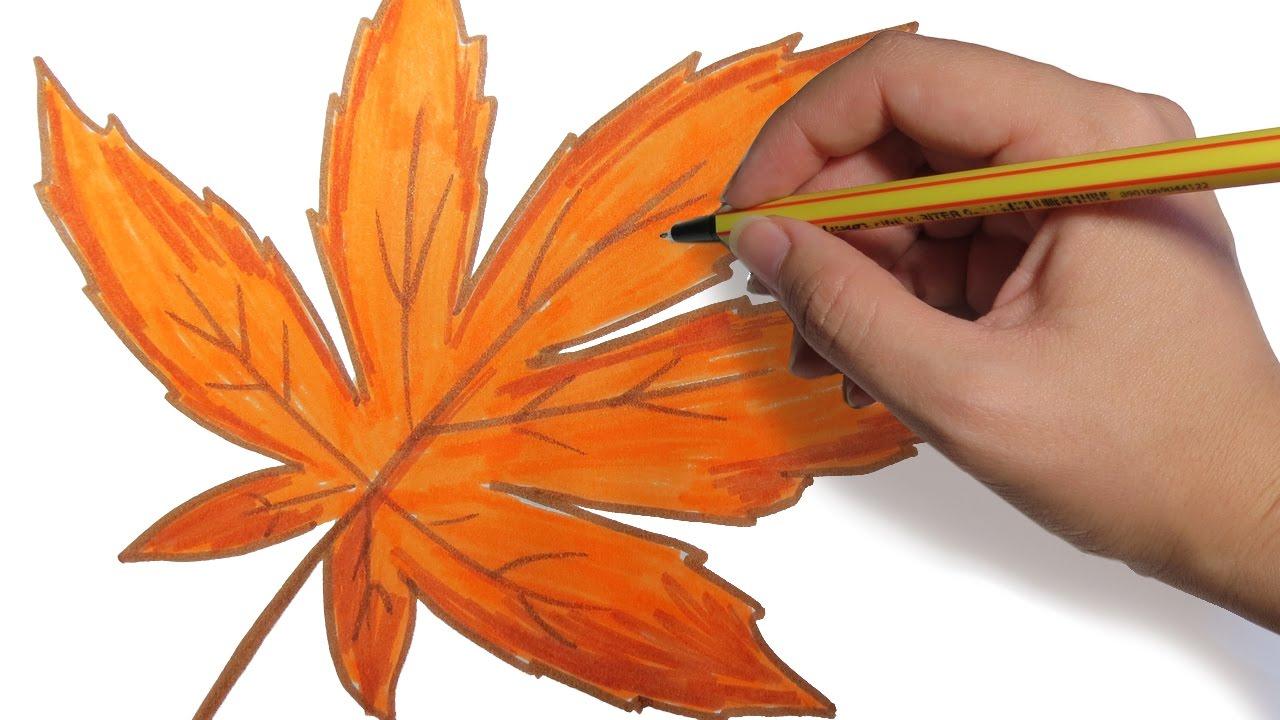 Como Dibujar Hojas De Arboles De Otoño Facil Paso A Paso A Lapiz