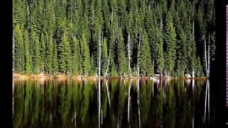 В лесах области сохраняются высокий и чрезвычайно высокий классы пожарной опасности