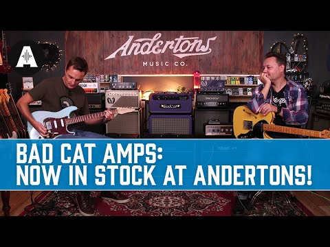 Bad Cat Amplifiers - Handmade, Boutique, Premium Amps from the USA! Now in Stock at Andertons