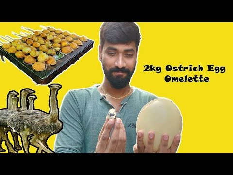 2kg Ostrich Egg omelette|| Broadway Pet market || Chennai's tasty and famous foods