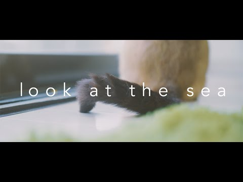 Look at the sea (Việt Sub)