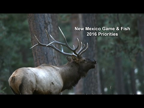 New Mexico Game & Fish 2016 Priorities