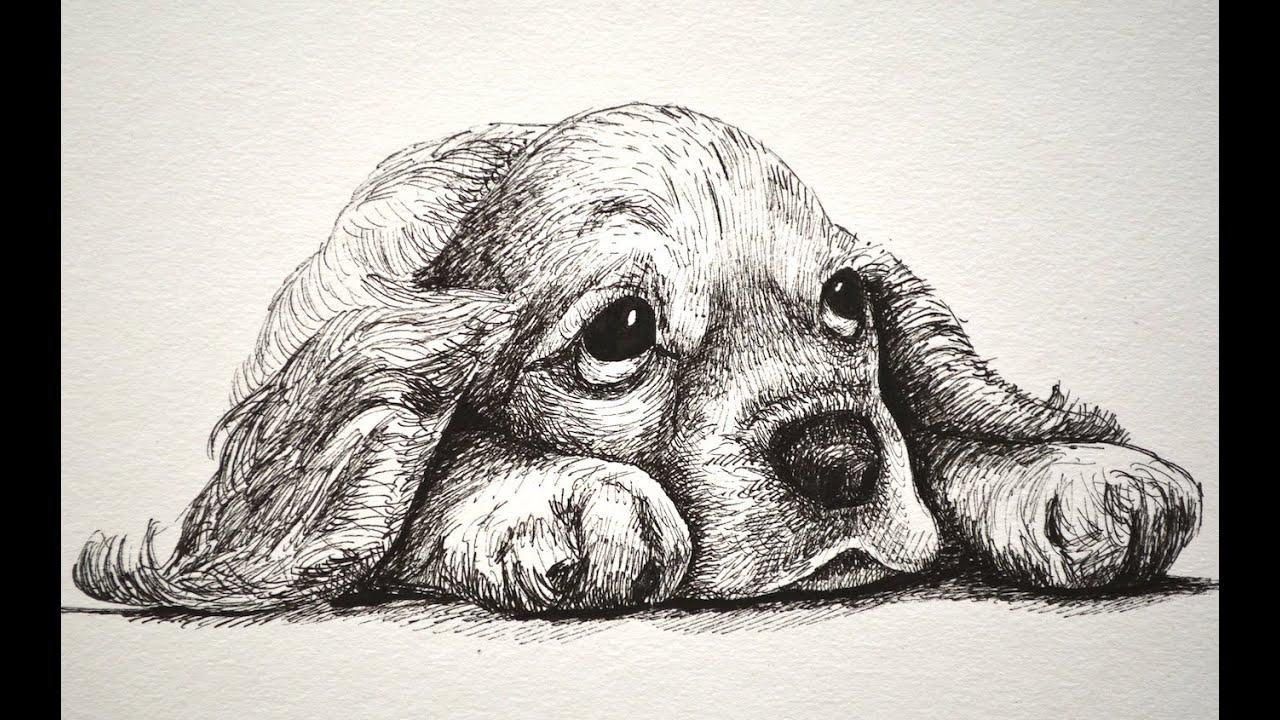 Cómo Dibujar Un Perro Cachorro Y Triste Y Tierno Con Marcadores