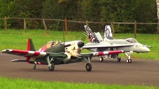 F/A-18C/D Hornet and Morane Saulnier D-3801 J-276 Hystorie of Swiss Army