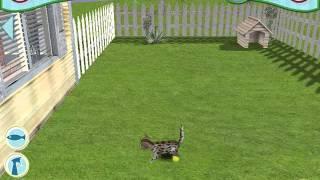 Catz Gameplay