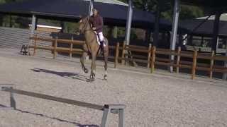 Centota Training Kent Farrington