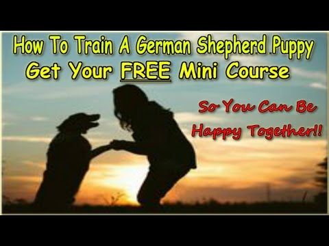 ▶▶-how-to-train-a-german-shepherd-puppy-▶download-now!◀-free-training-mini-course-:))))))