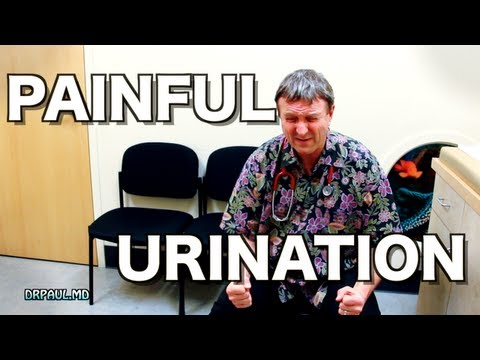 Painful Urination in Otherwise Well Children -- Does this mean UTI?