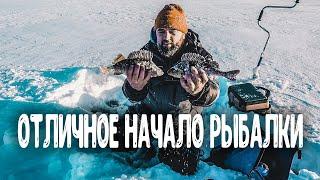 Окунь гнет кивки Первая лунка дала окуней Отличное начало рыбалки Рыбалка в Тайге в глухозимье