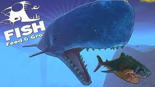 КИТ КАШАЛОТ ОХОТИТСЯ НА МЕГАЛОДОНА | Feed and Grow Fish