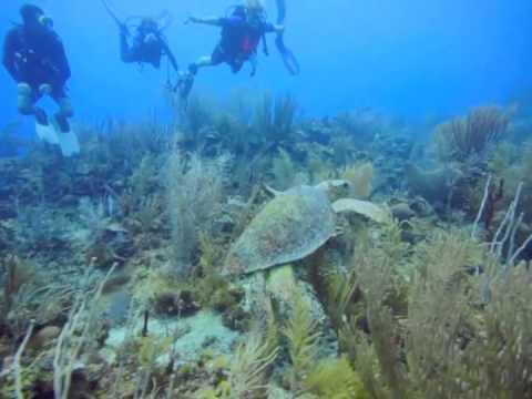 St George's Caye Resort - Belize