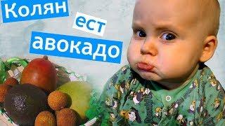 Коля ест АВОКАДО 🍎ПРИЕДУТ ГОСТИ 🚘 вокальный конкурс 🎼 Дима залез на ДЕТСКУЮ ГОРКУ