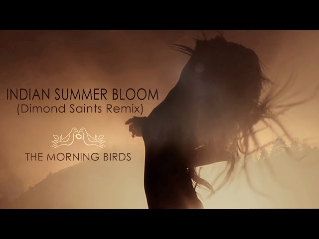 Indian Summer Bloom (Dimond Saints Remix) by The Morning Birds