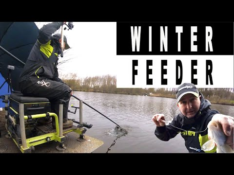 WINTER FEEDER FISHING - Cold, clear stillwater feeder fishing for ANYTHING THAT SWIMS!