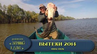 Рыбалка в Астрахани. Ловля сома на донку, крупной щуки и жереха.(В этом видео есть рыбалка на раскатах, ловля сома на донку, ловля и вываживание крупной щуки, а так же ловля..., 2015-02-15T14:23:31.000Z)
