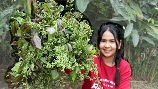 Awesome Cooking : Neem Flower & Leaves - Azadirachta Indica Salad Recipe - Cook & Eating Food Show
